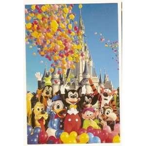 Walt Disney World Magic Kingdom 4x6 Postcard 0100 11617