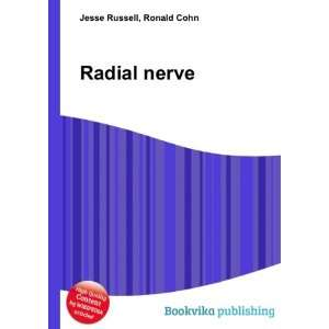 Radial nerve [Paperback]