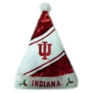 Indiana Hoosiers Santa Claus Christmas Hat   NCAA College