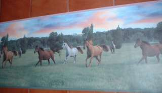 BEAUTIFUL HORSES COUNTRY 18 inch Wallpaper bordeR Wall