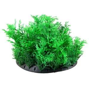 Como Fish Tank Green Leaves Plastic Plant Grass Decor w