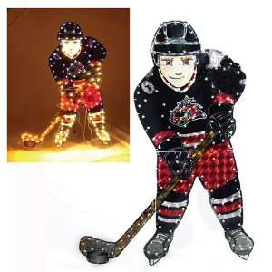 Columbus Blue Jackets Lighted Lawn Figure: Sports
