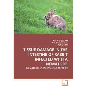 rabbit (9783639285604) Prof Dr Bilqees FM, Prof.Dr. Khatoon N