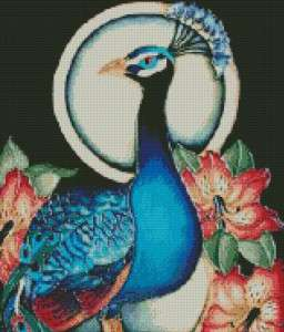 Cross Stitch Chart Pattern Peacock Birds DMC threads
