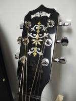 Deering D6 Deluxe 6 String 06 Tone Ring Resonator Banjo w/ Case NICE