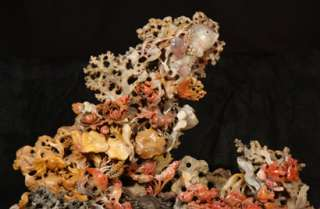 ANTIQUE CHINESE HAND CARVED CORAL REEF FISHES CRABS CORAL SHRIMP CLAMS