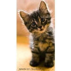 6x9) Kittens 16 Month 2012 Weekly Planner Calendar