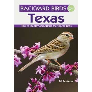 Backyard Birds of Texas   Book Series, Top 25 Common Species