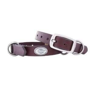 Zep Pro Georgia Bulldogs Brown Leather Concho Dog Collar
