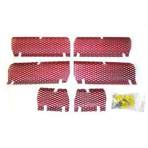 Screen Kit Arctic Cat Candy Red Automotive