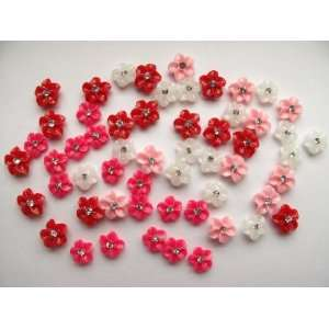 Nail Art 3d 60 Pieces Mix Color Flower for Nails, Cellphones 1.1cm