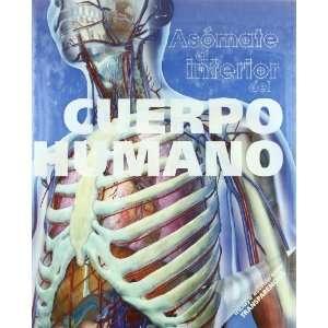 Asomate al cuerpo humano (9788428535199): Unknown: Books