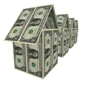 Dollars Houses   Peel and Stick Wall Decal by Wallmonkeys