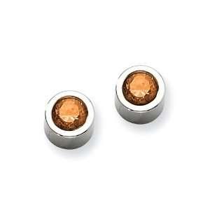 Stainless Steel Brown CZ Post Earrings Jewelry