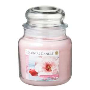 Colonial Candle Pink Cherry Blossom 15 oz Traditions Jar