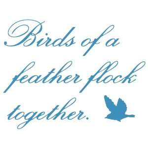 Wall Hugs Vinyl Wall Quotes   Birds Of A Feather Wall Decal, Cadet