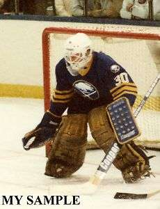 Barrasso Photo Buffalo Sabres NHL Hockey Cage Goalie Mask Brown Pads